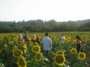 yoga retreat group in italy playing in the sunflowers friendship