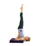 Yoga woman doing supported Shoulderstand Salamba Sarvangasana